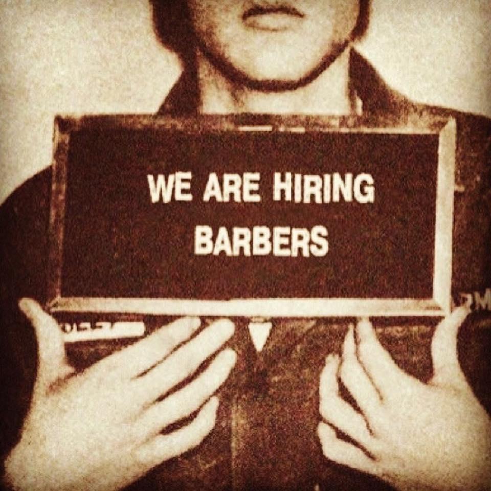 hledame-barbera